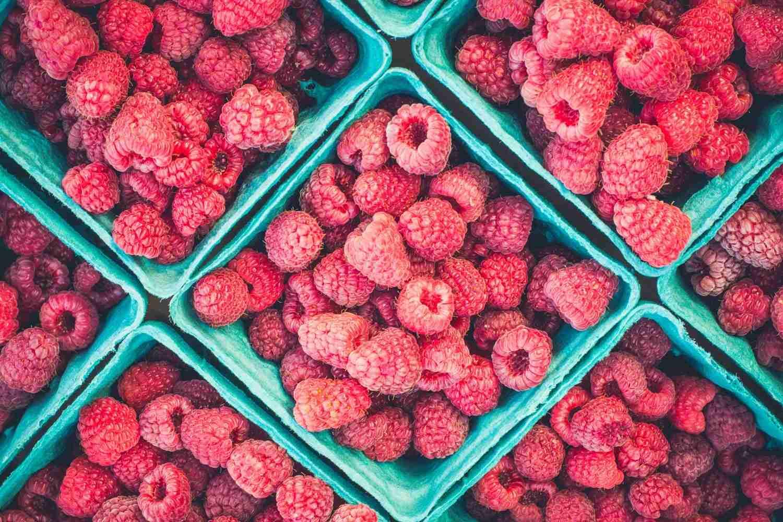 Rasberries in cyan carton boxes