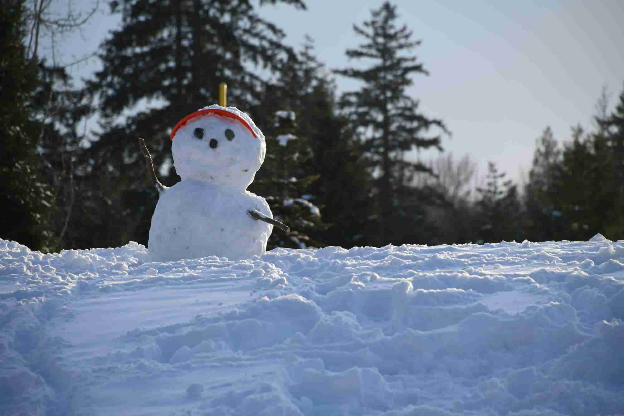 Snowman with stick hands and red cap